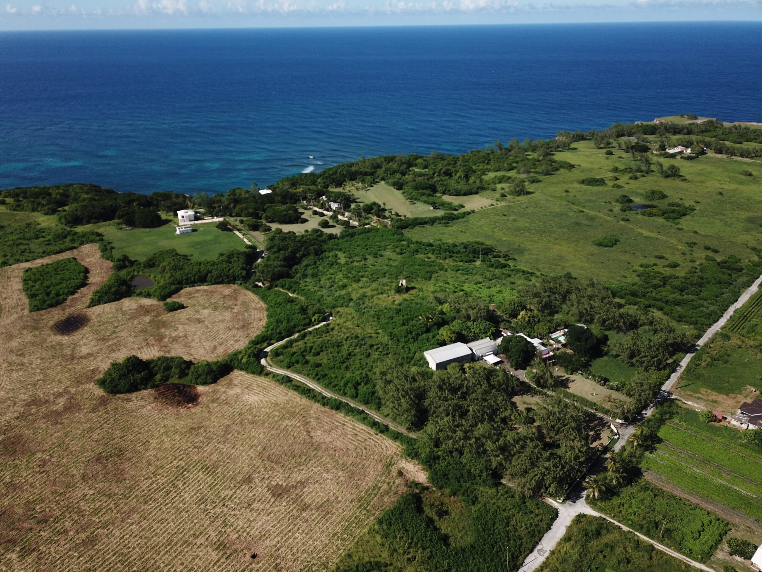 Cluff's Plantation, St. Lucy